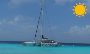 bluefinn charters